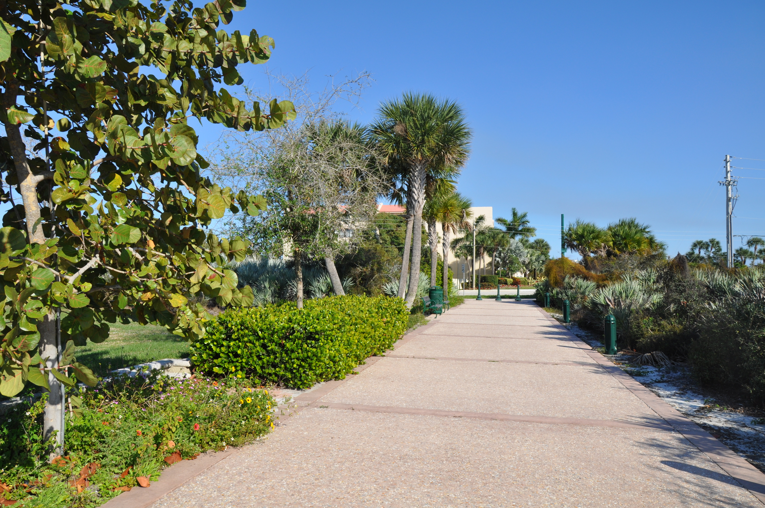 Tierra Del Sol Jupiter Florida Riverwalk Colored Tabby Concrete.JPG