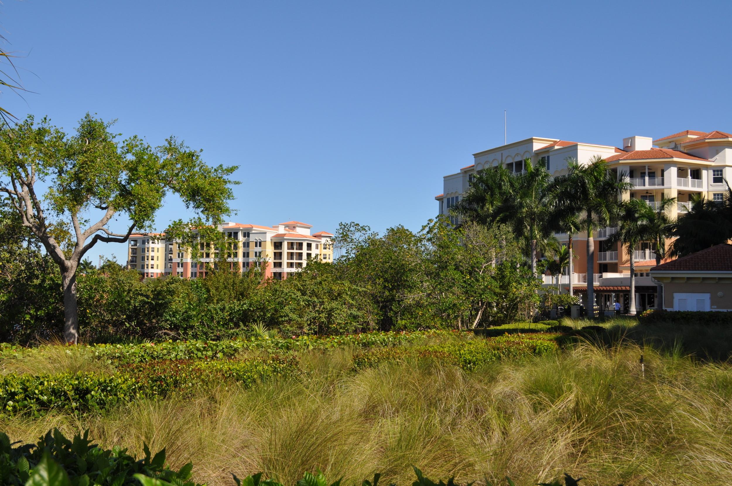 Jupiter Yacht Club Florida Bio Swale Retention.JPG