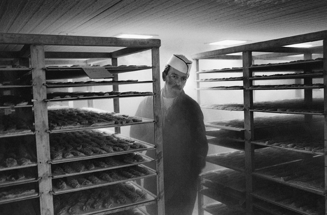 13_fish plant worker in a freezer.jpg