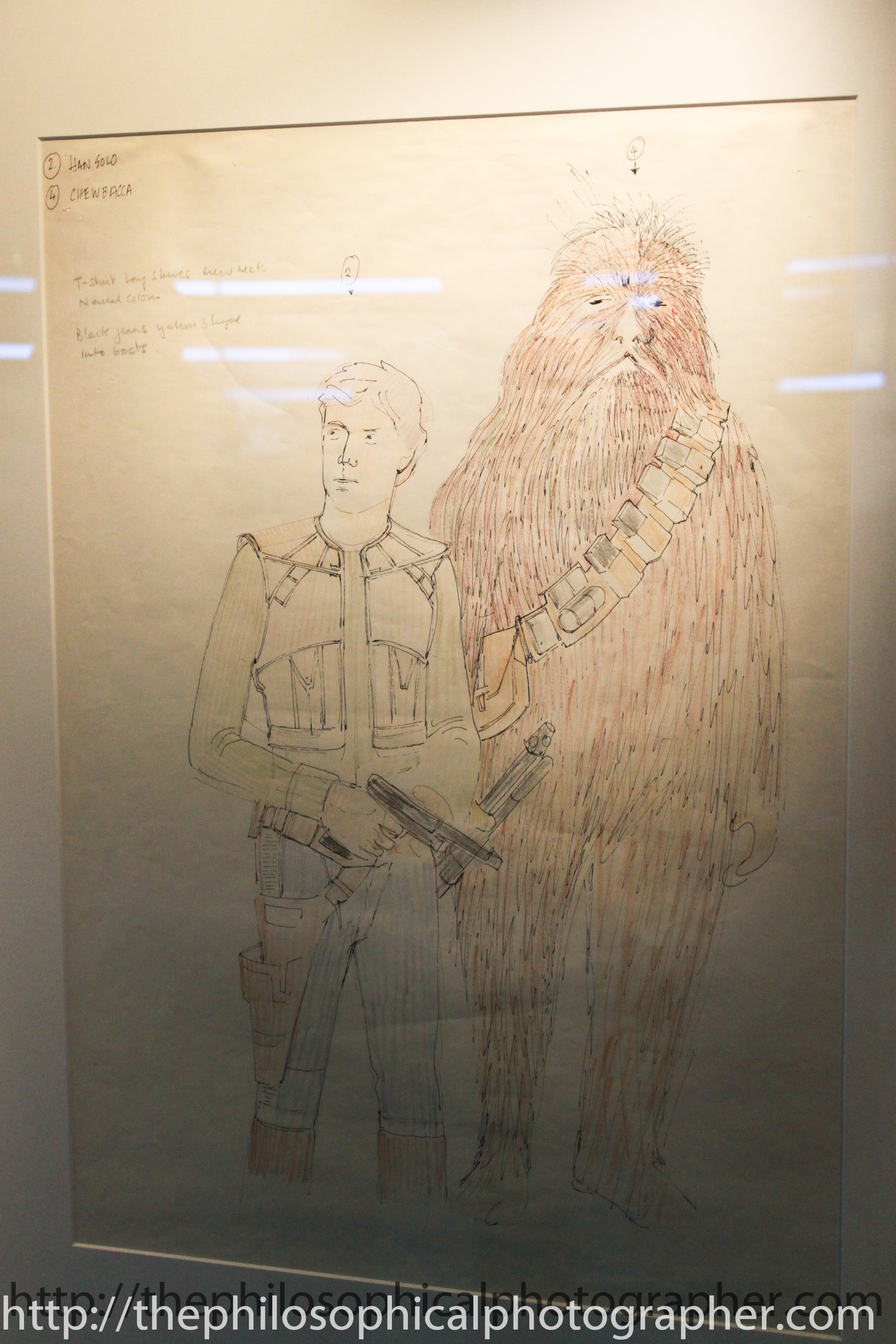 Han Solo and Chewbacca Costumes