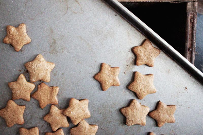 128js-Gingerbread-Cookie-8.jpg