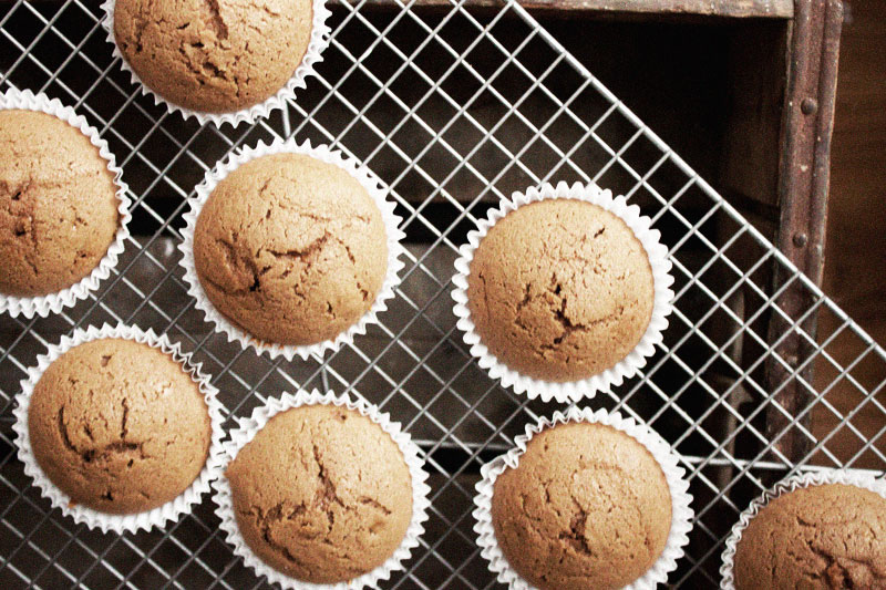 128js-Gingerbread-Cupcake-6.jpg