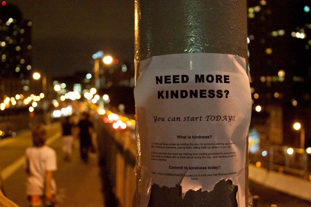 Need More Kindness? Street signs, Brooklyn Bridge, NYC, flyers
