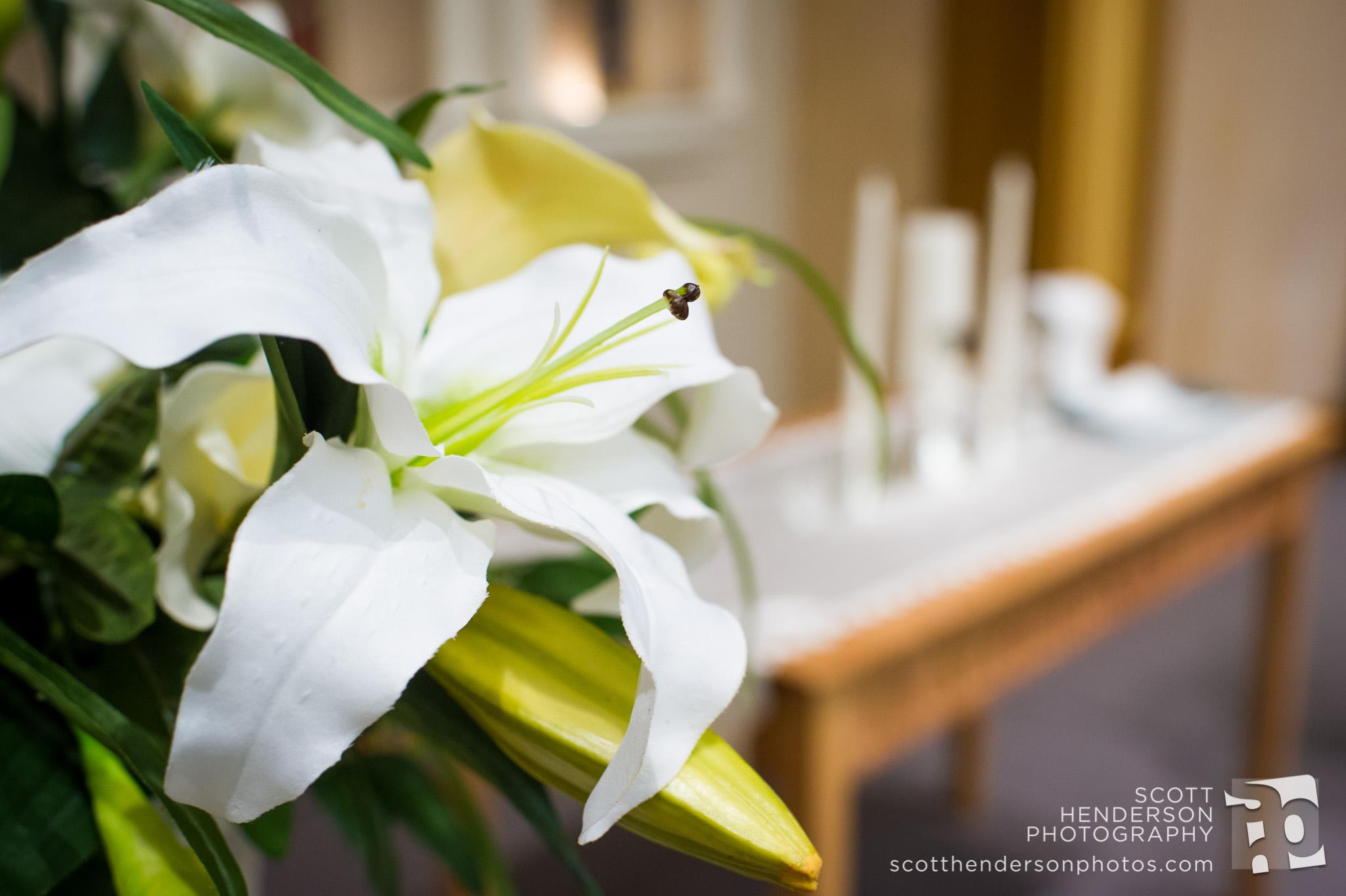 janice-martin-wedding-2014-002.jpg