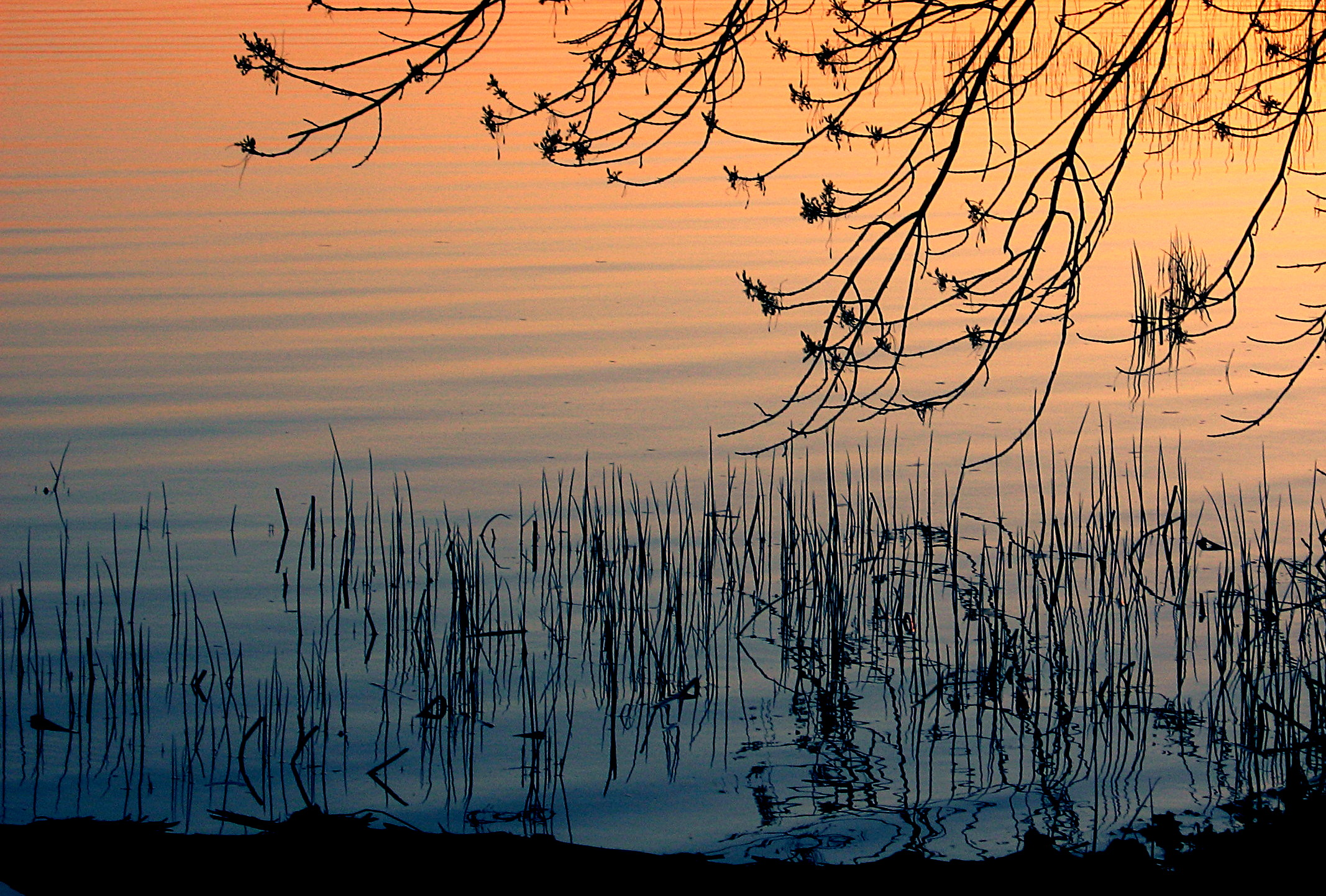 A sunset reflected in water.