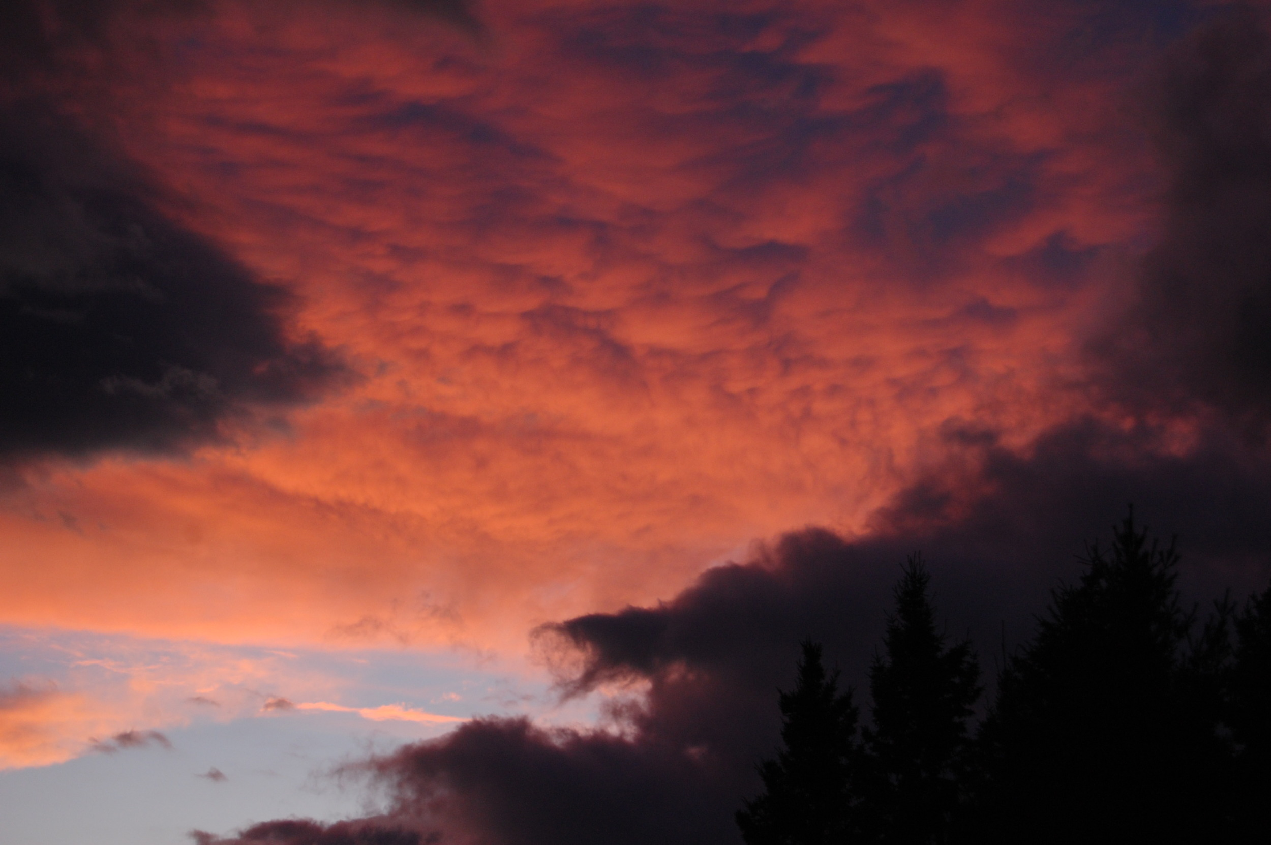Clouds lit by a setting sun.