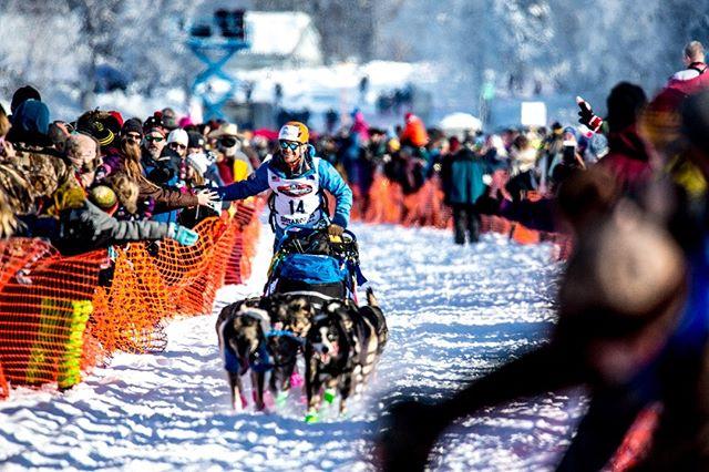 Iditarod Willow Start March 2018