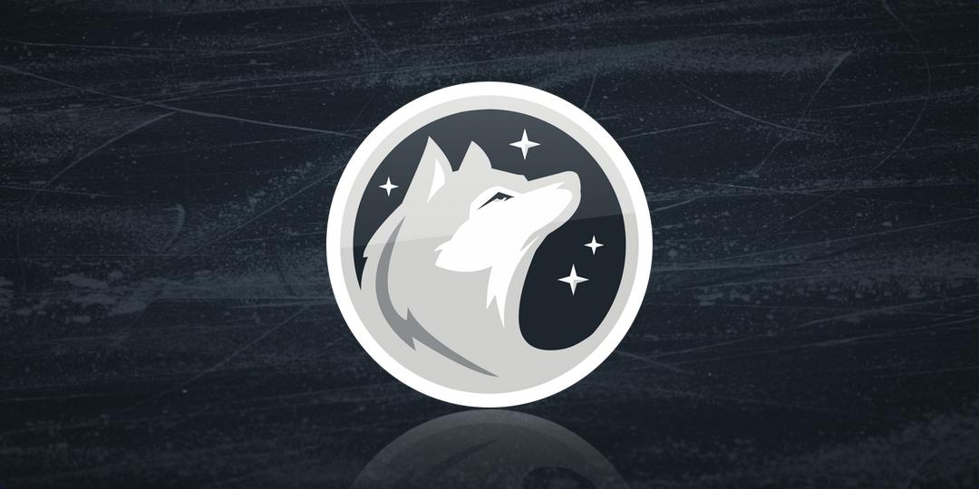 Alaska Huskies