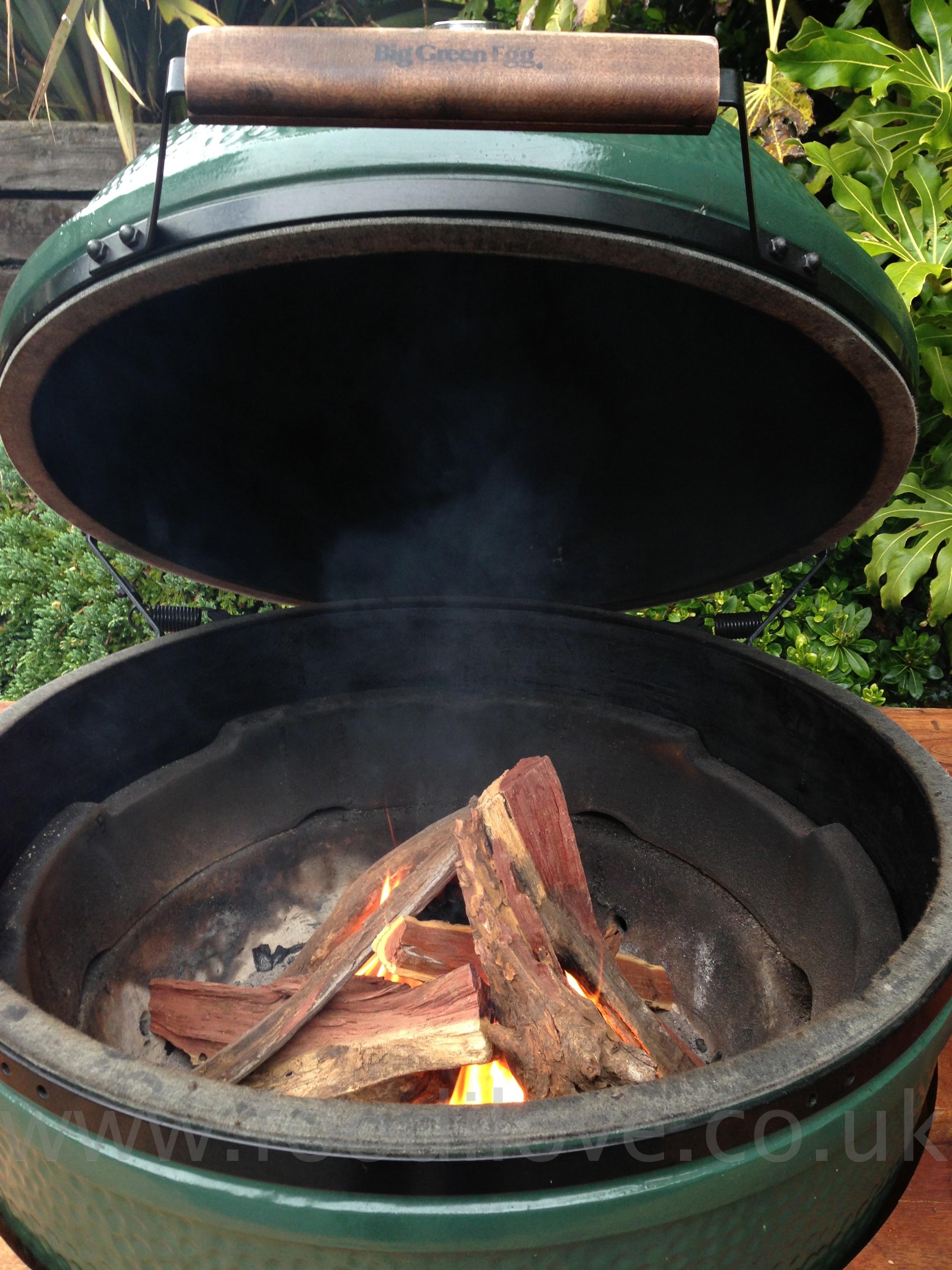 Rib Eye Steak on the Braai/BigGreenEgg using Kameeldoring Wood
