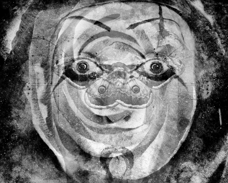 mothman dreams