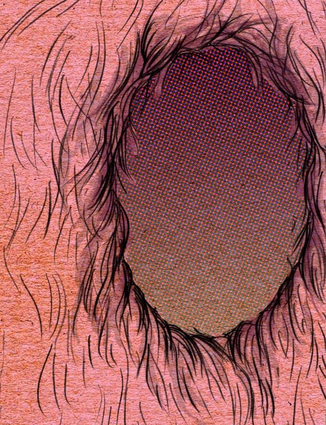 furface2.jpg