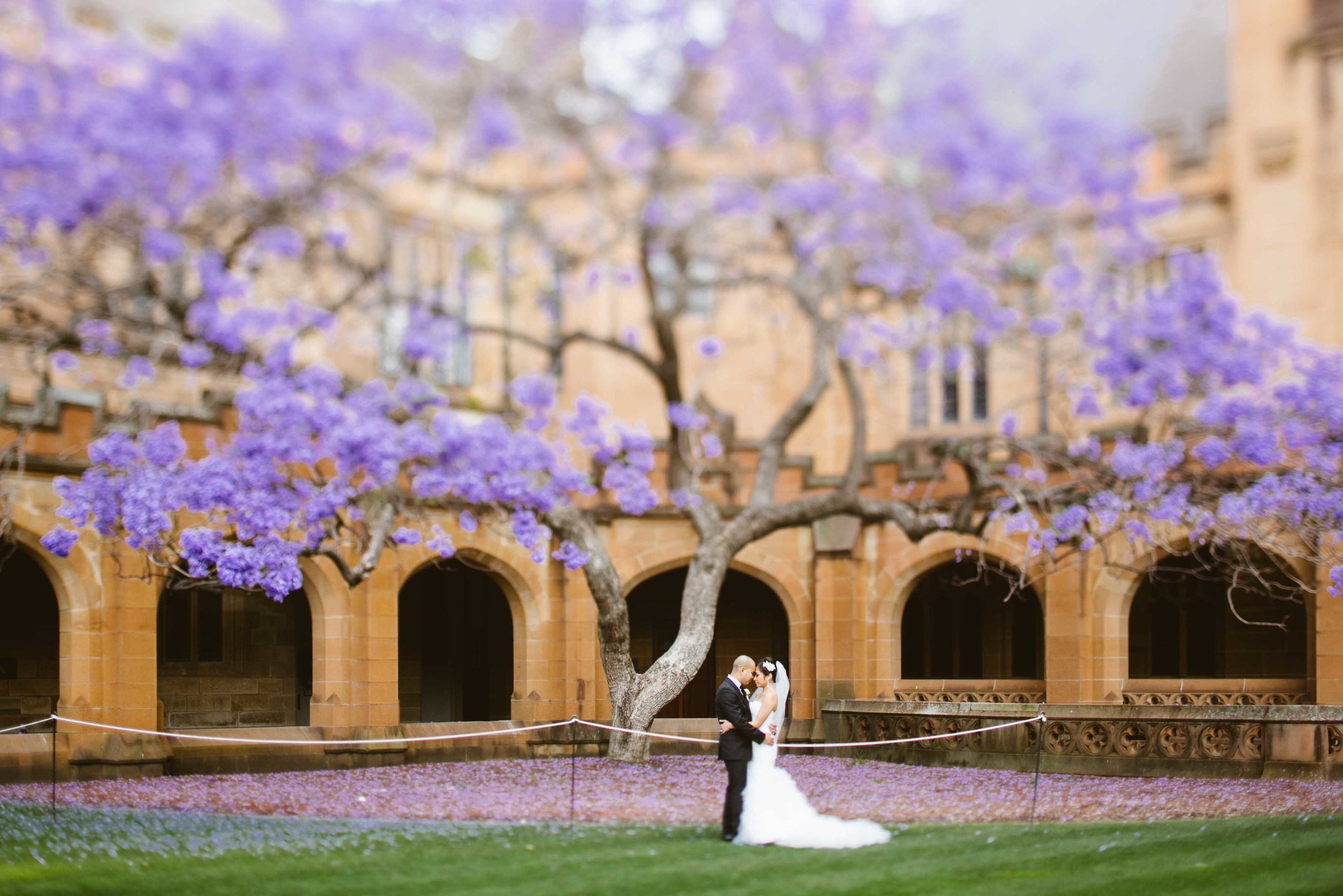 Arvee and Ricky wedding Sydney University by Milton Gan