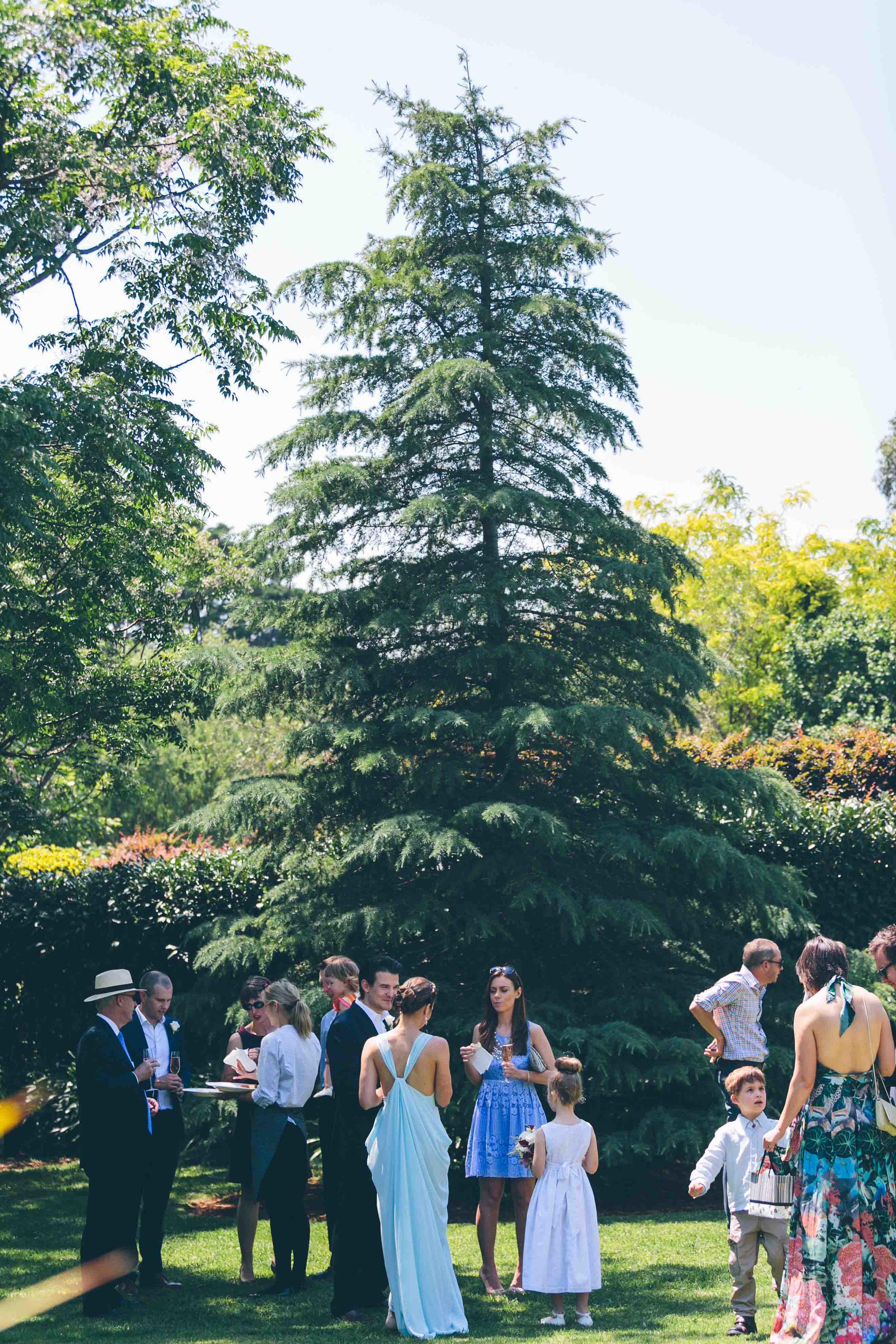 Angela and Steve Central Coast wedding Bells at Killcare by Milton Gan 077.jpg
