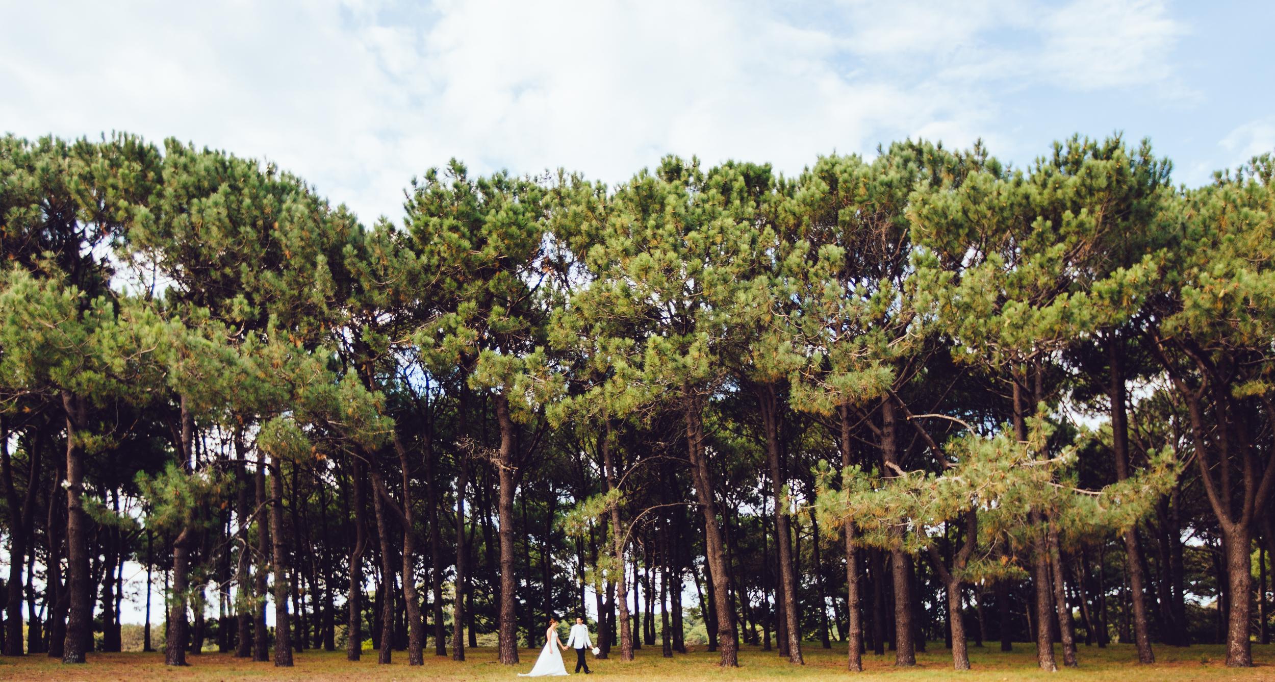 Gretta and Greg wedding, Centennial Park, Sydney by Milton Gan