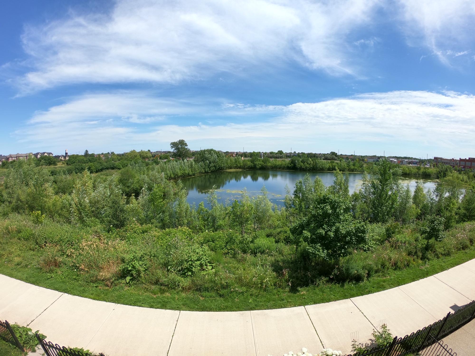 Pond Centre View.jpeg