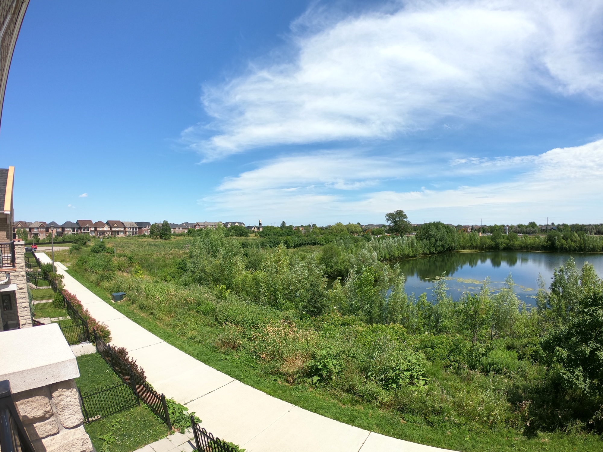 Pond left view.JPG