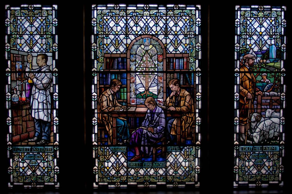 Reid Library Window, Rowett Institute. (Photo: Gordon Watt)