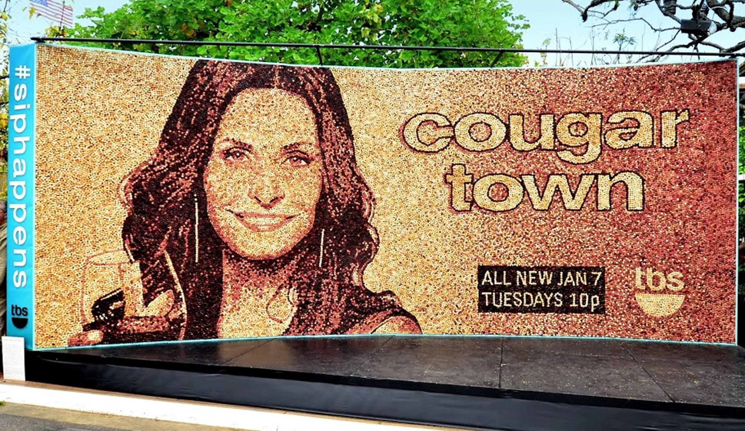 cougar town.jpg