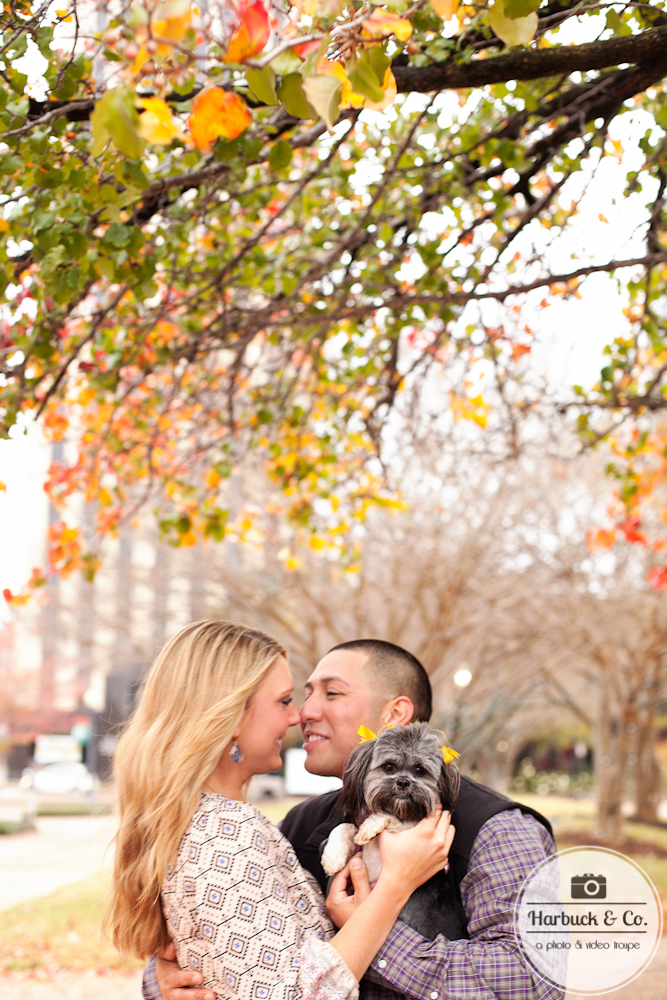Harbuck & Co. - Engagement Photography