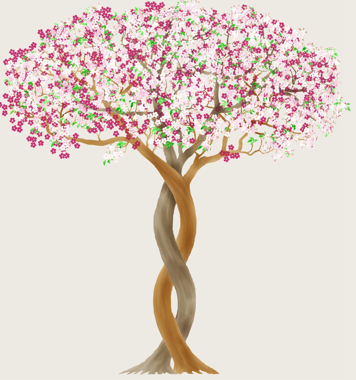 Flowers Version 3