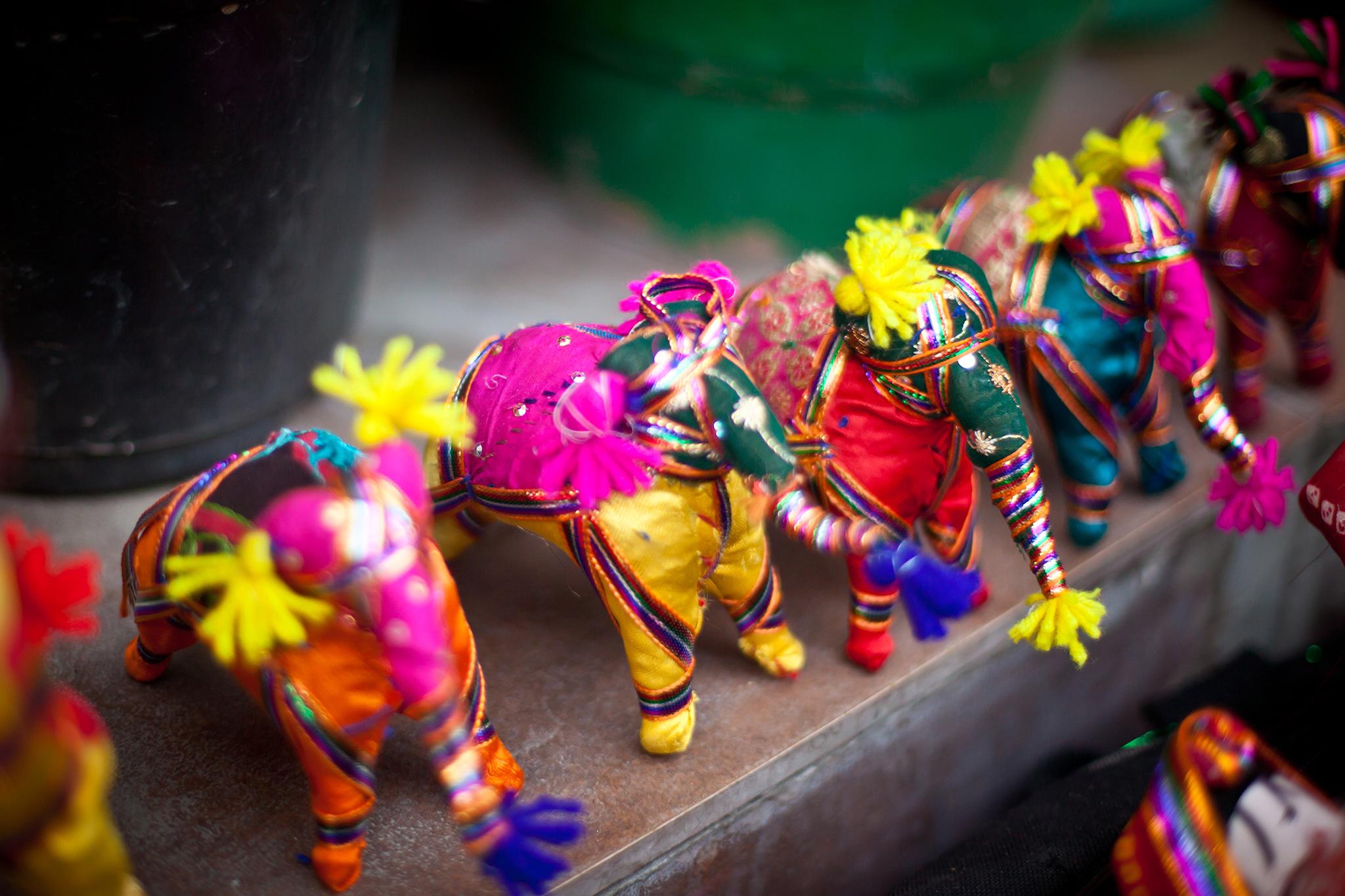 INDIA_ELEPHANTS_WEBSITE.jpg