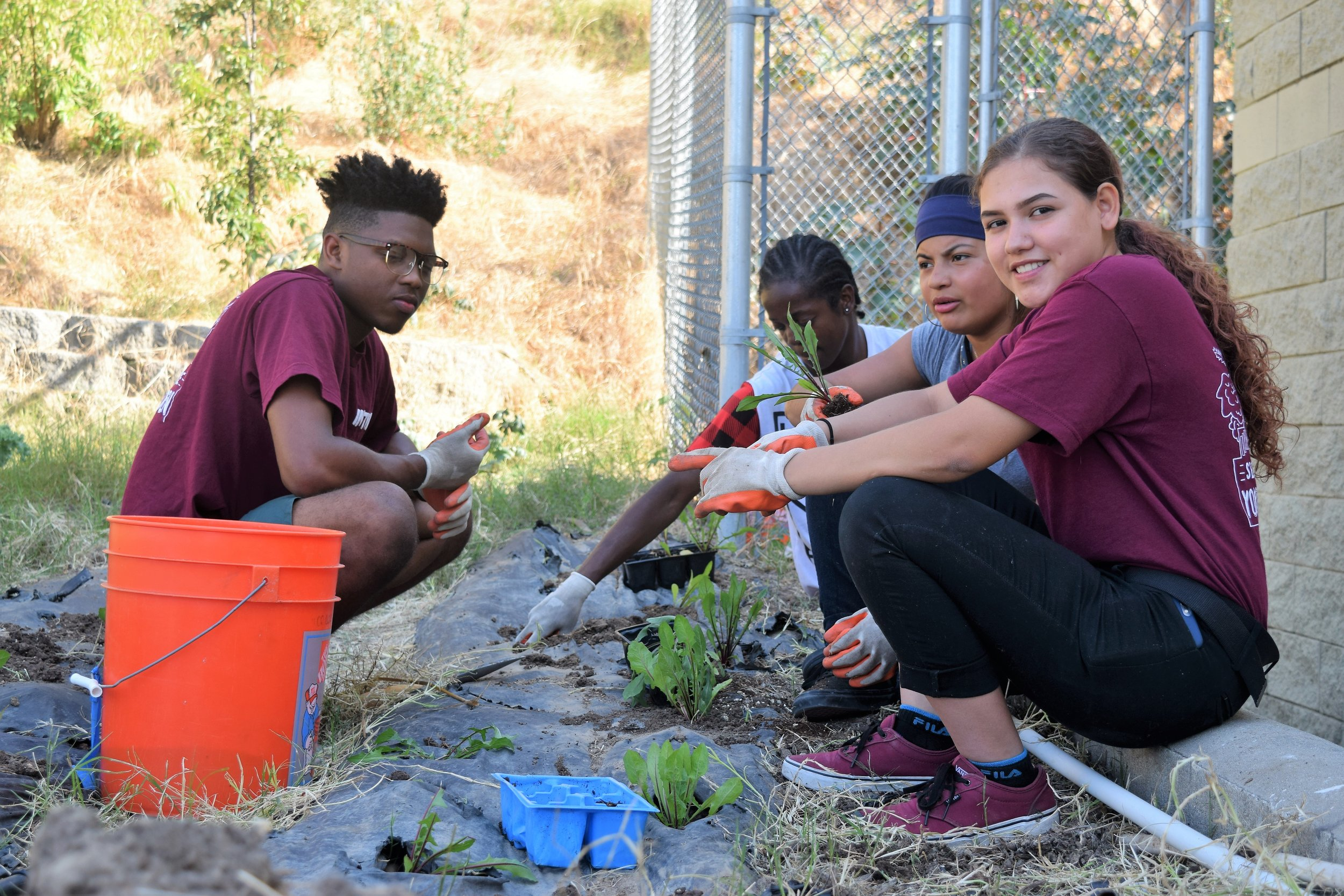 1 CSA box sign up = 1 youth employed in our garden - Here's a sample of what your Fall 2019 box might include (8-10 items, varies weekly):• Kale • Tomatoes• Zucchini • Cucumbers• Beets • Eggplant