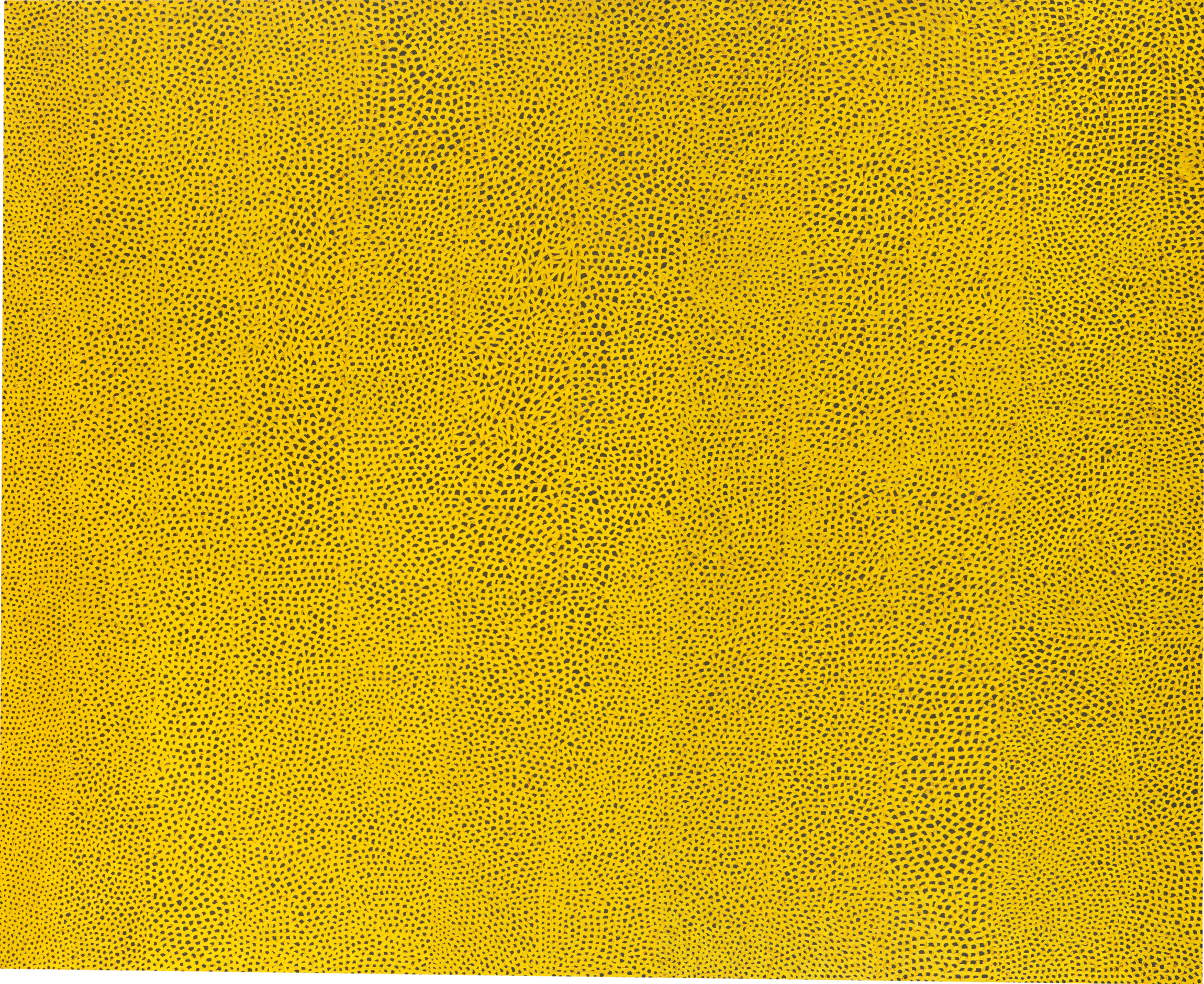 Infinity Nets Yellow , 1960. Oil paint on canvas, 94 1/2 x 116 in. (240 x 294.6 cm)  National Gallery of Art, Washington. Gift of the Collectors Committee (2002.37.1). © Yayoi Kusama