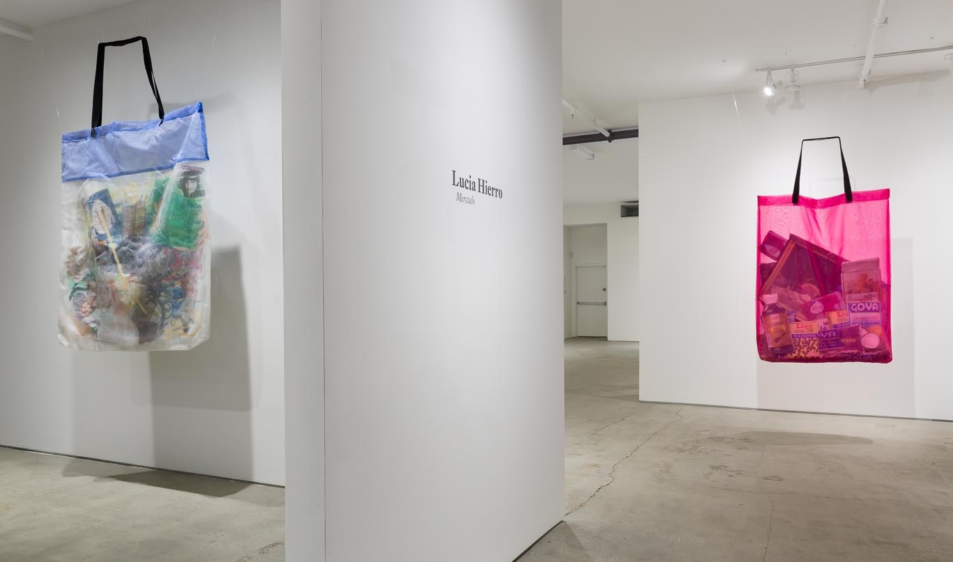 Installation view of  Mercado  at the Elizabeth Dee Gallery. Photo by Etienne Frossard.