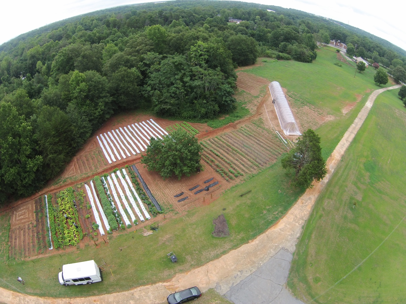 Minnie's Farm is located in the Staunton Bridge Community off White Horse Road of Greenville, South Carolina. Found right off the Staunton Bridge Road. This farm was built in May of 2016 with the help of many neighborhood partners. It is our largest farm to date.