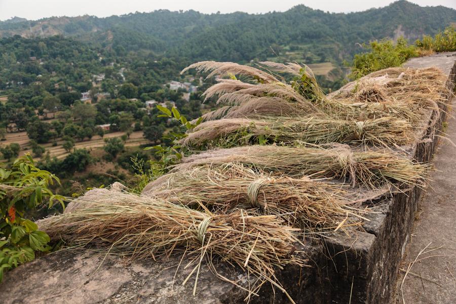 20111022_kangra_fort_0160.jpg