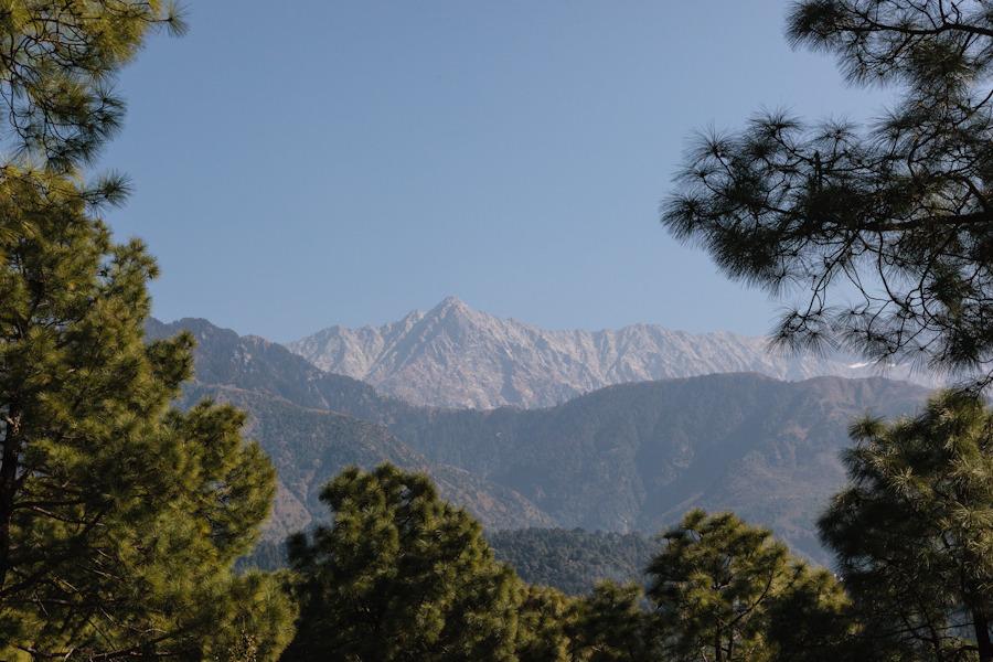20111022_dharamsala_1043.jpg