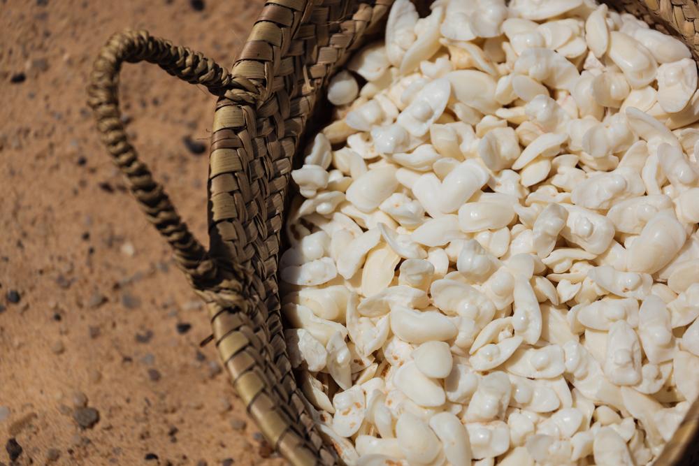 20120424_western_sahara_02013.jpg