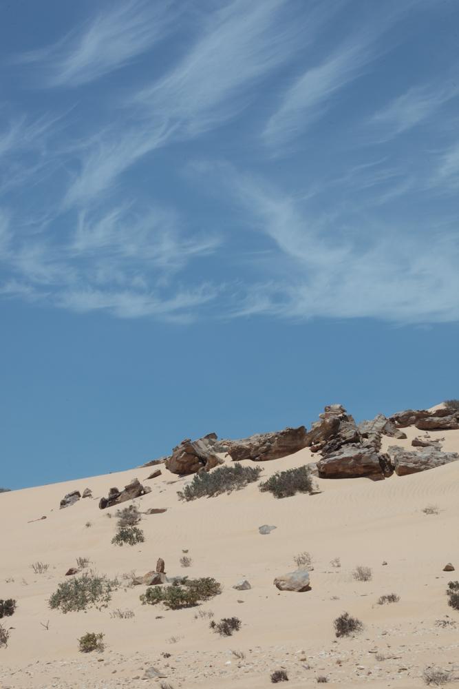 20120424_western_sahara_02178.jpg