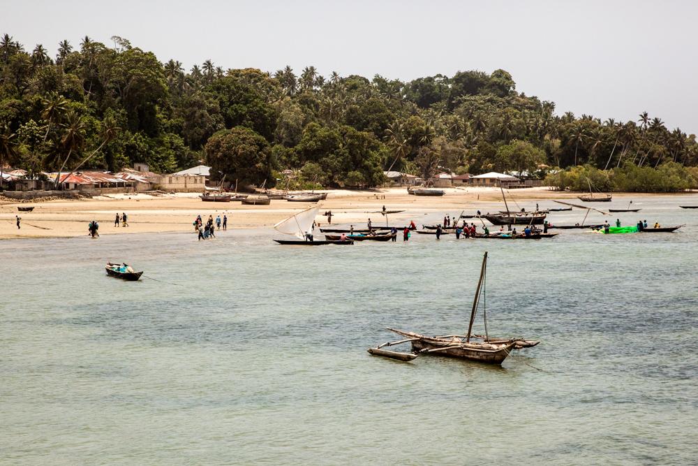 20120308_pemba_island_0754-113.jpg