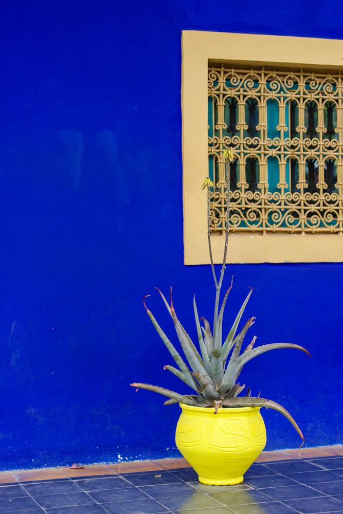 20120427_morocco_03722.jpg
