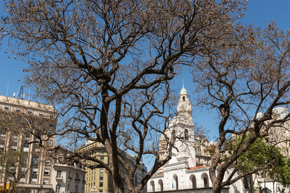 20131024_buenos_aires_30687.jpg