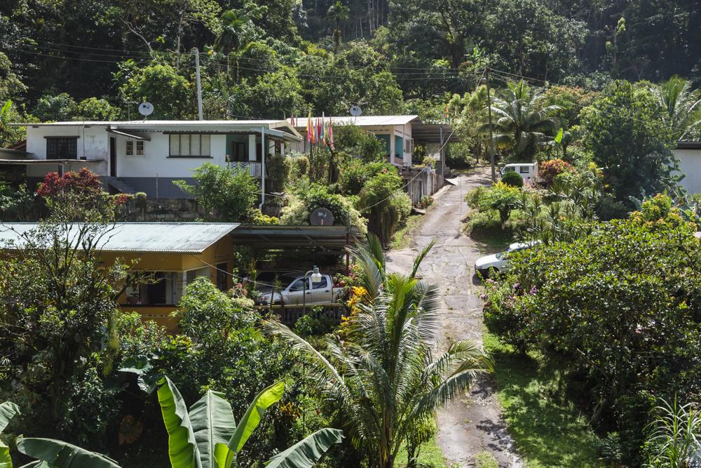 20130919_trinidad_00121.jpg