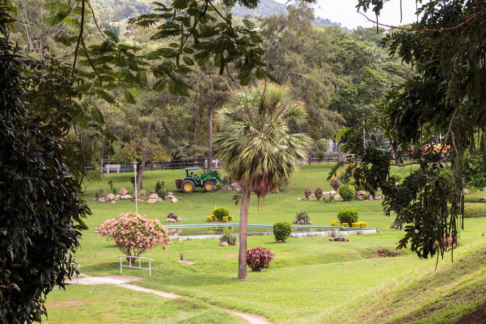 20130920_trinidad_02174.jpg