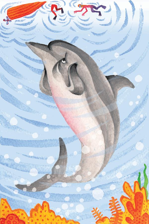 dolphin_final.jpg