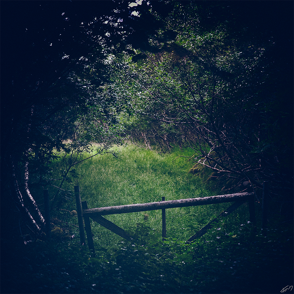 Sommereng / Gate to green pasture