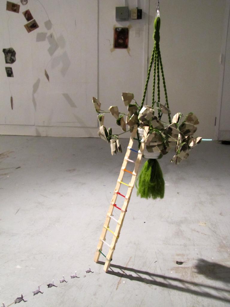 Camo Plant