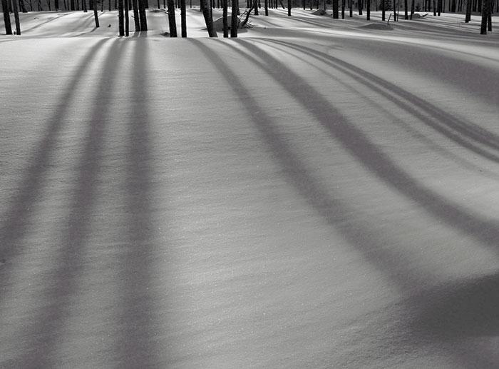 snow-zen2.jpg