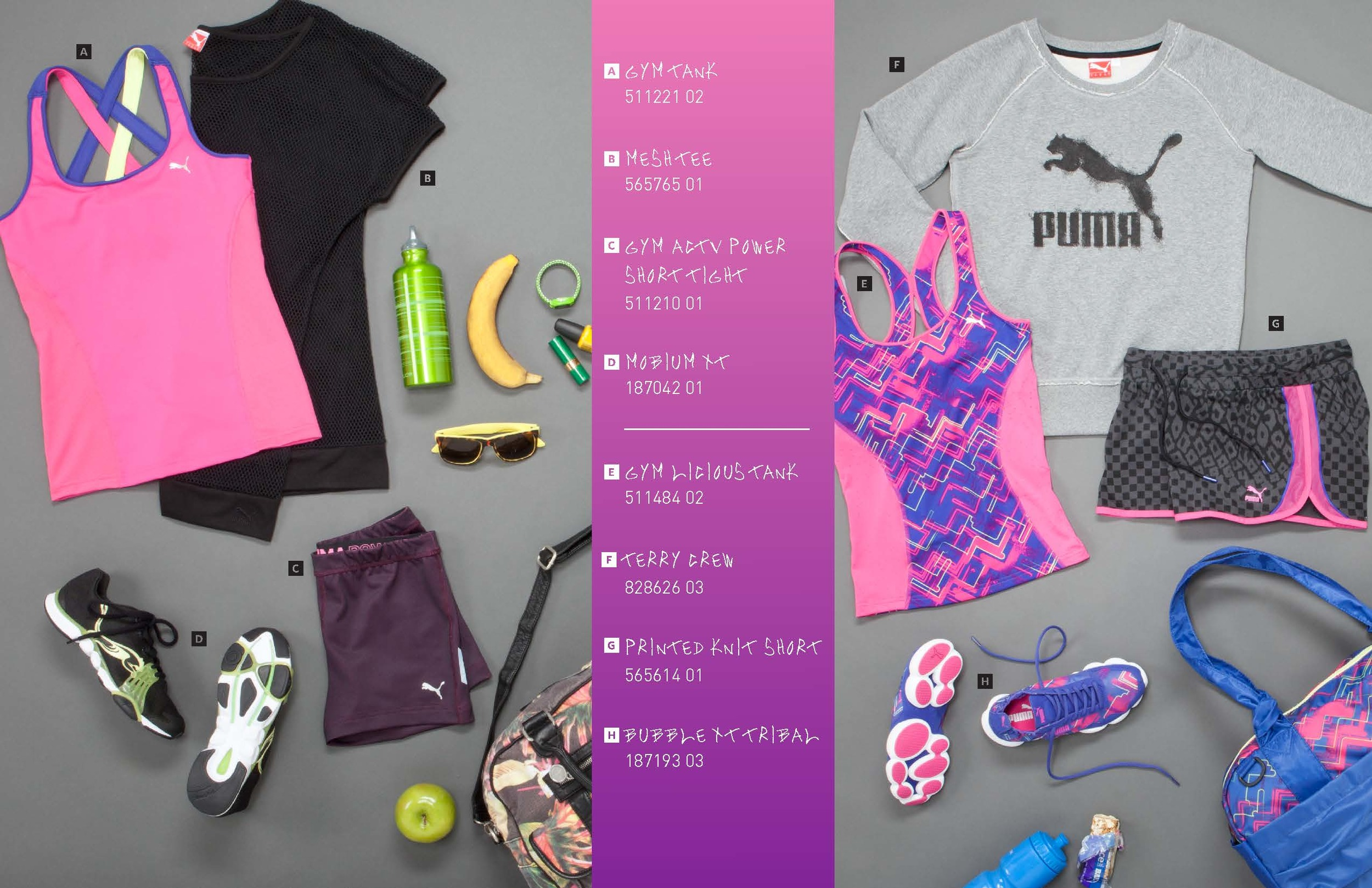 PUMA_booklet_7-30-13_HIRES_view_Page_05.jpg