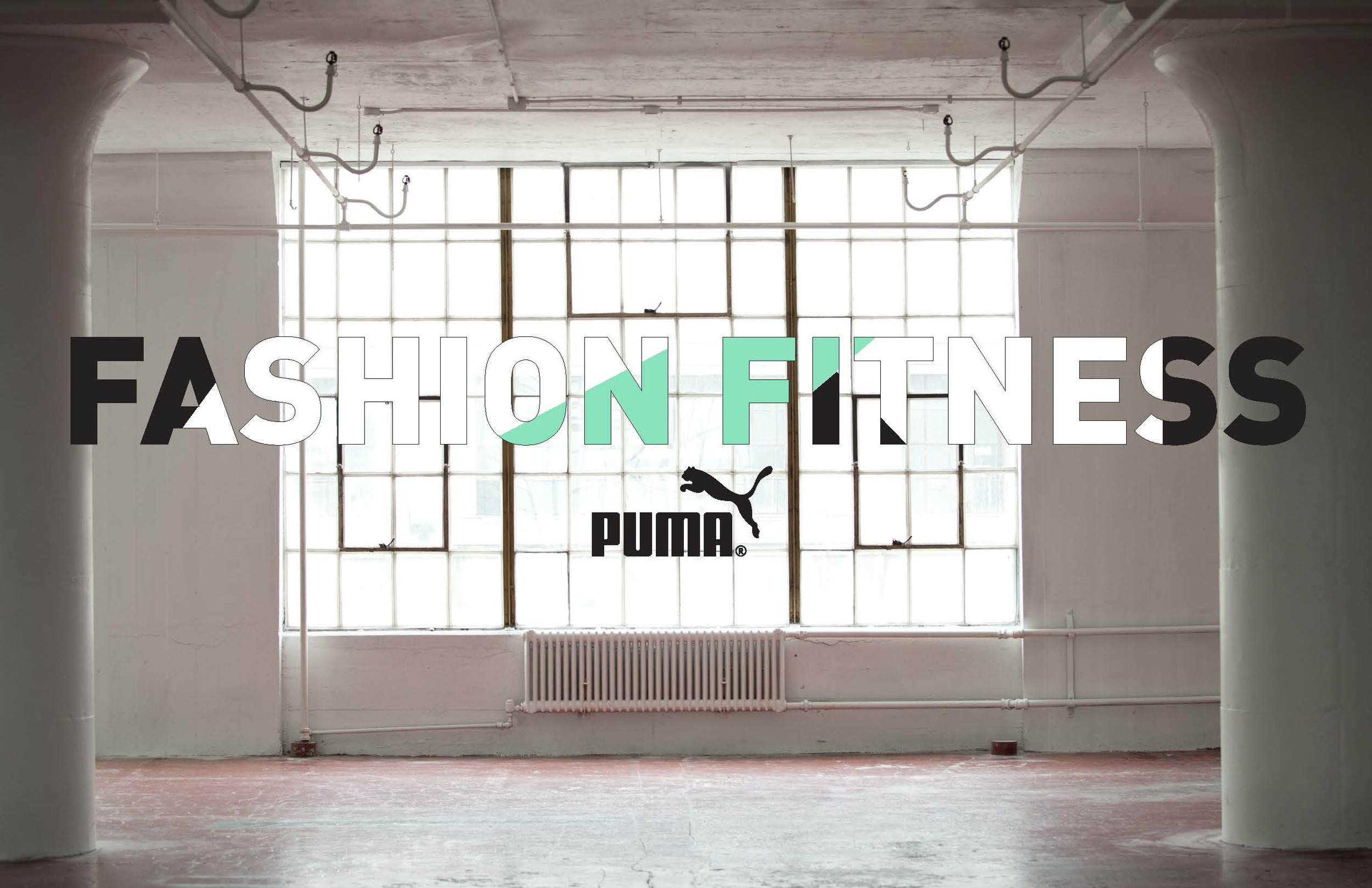 PUMA_booklet_7-30-13_HIRES_view_Page_10.jpg