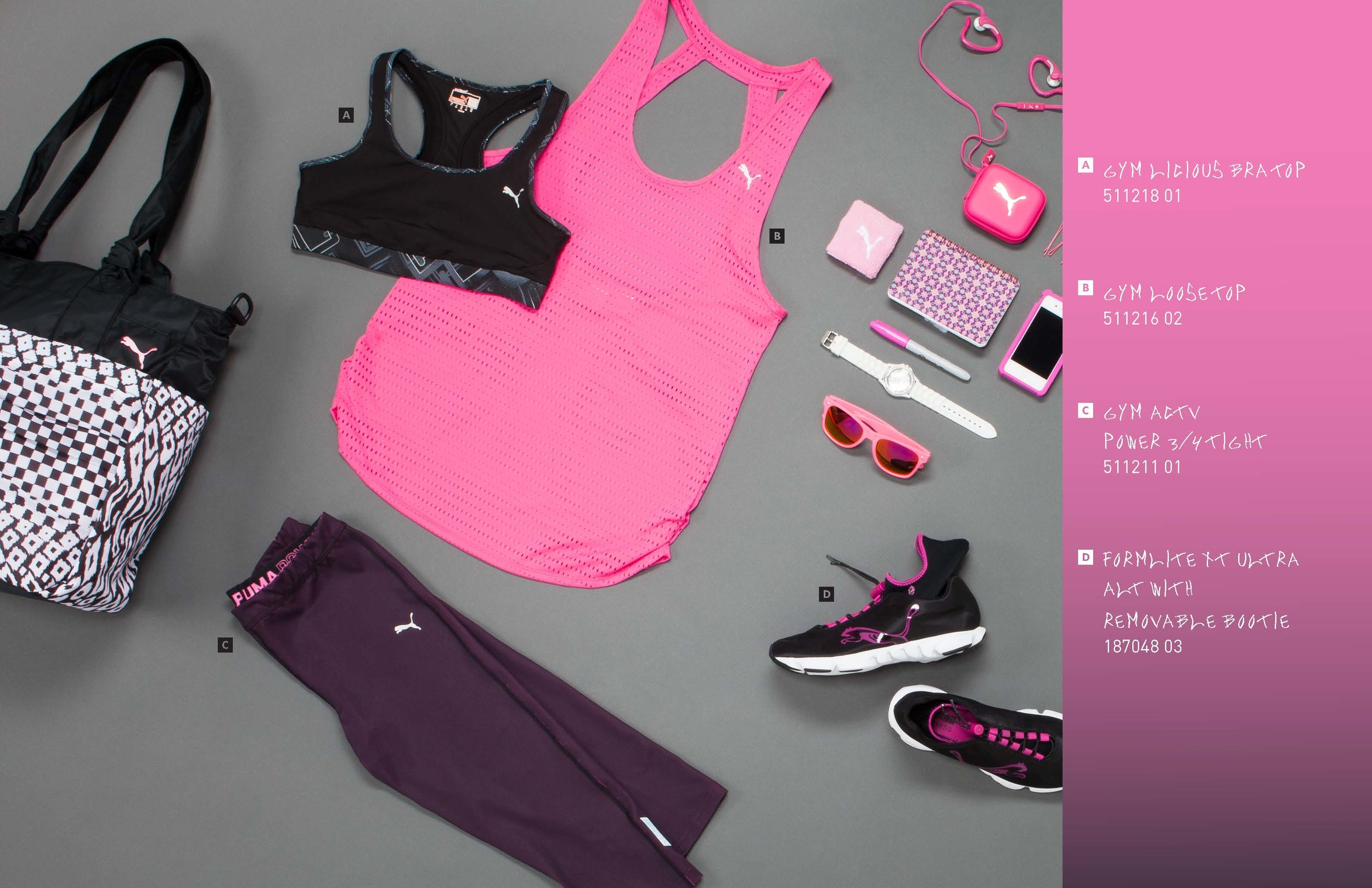 PUMA_booklet_7-30-13_HIRES_view_Page_09.jpg