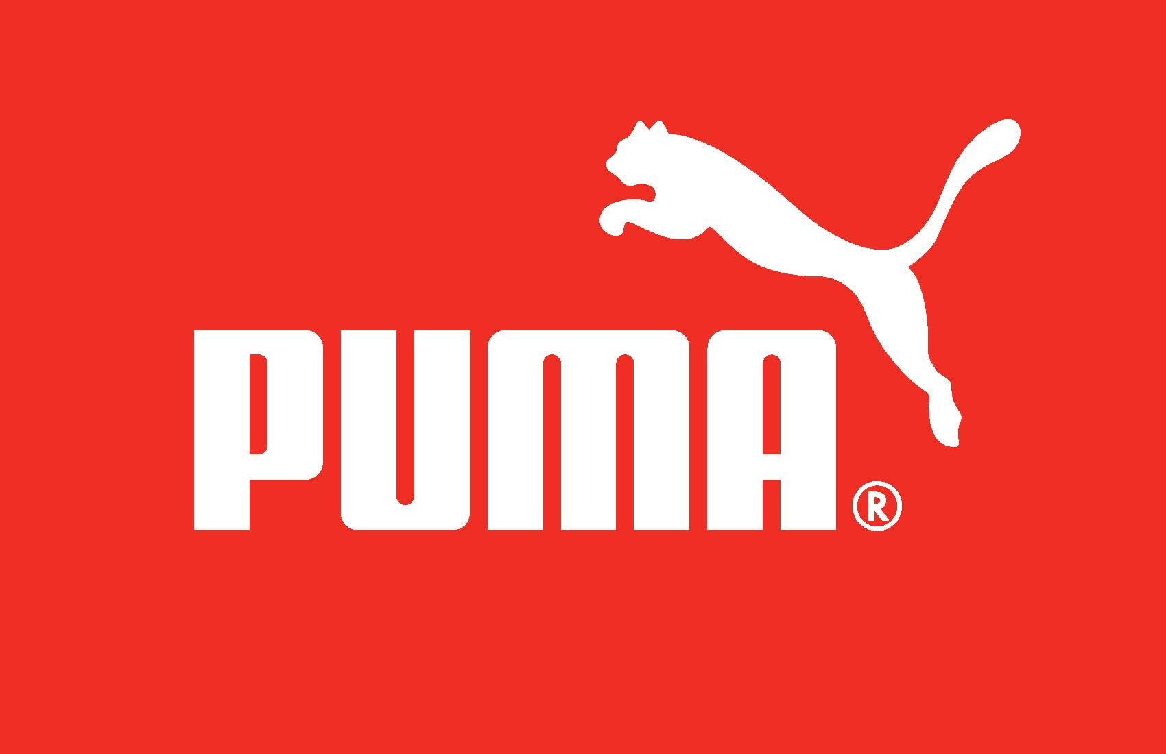 PUMA_booklet_7-30-13_HIRES_view_Page_22.jpg
