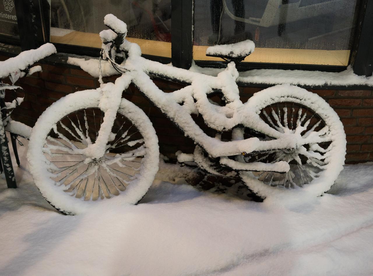 Snow Mountain Bike