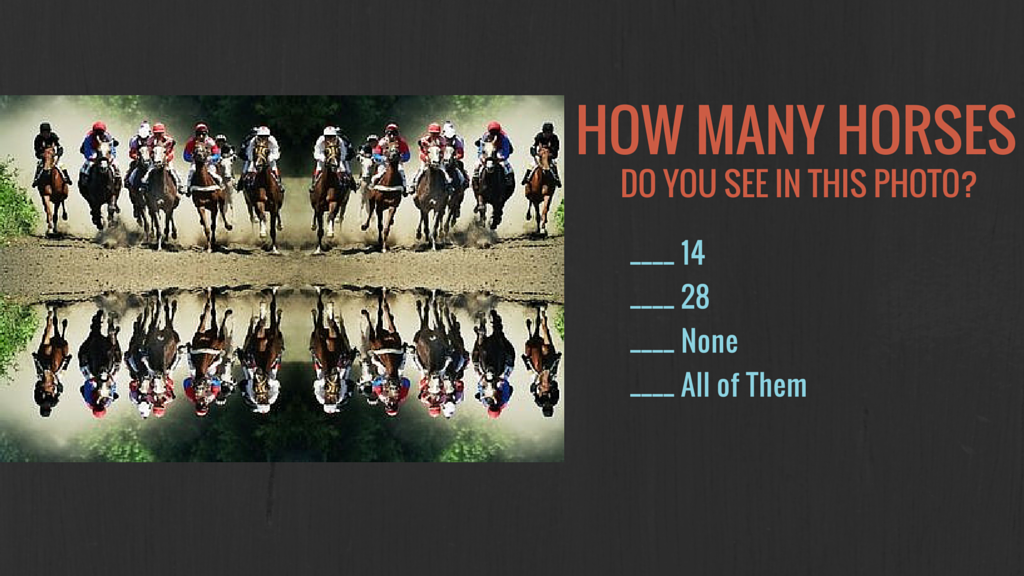 How Many Horses.png