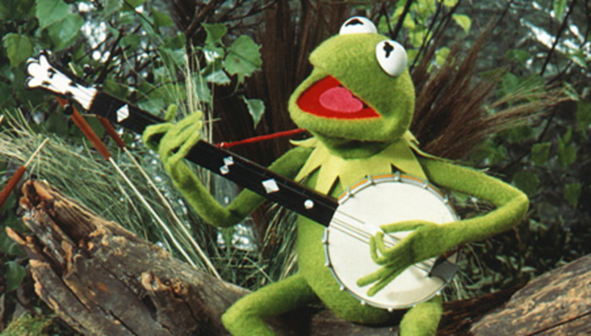 Kermit_Night-Hawk.jpg