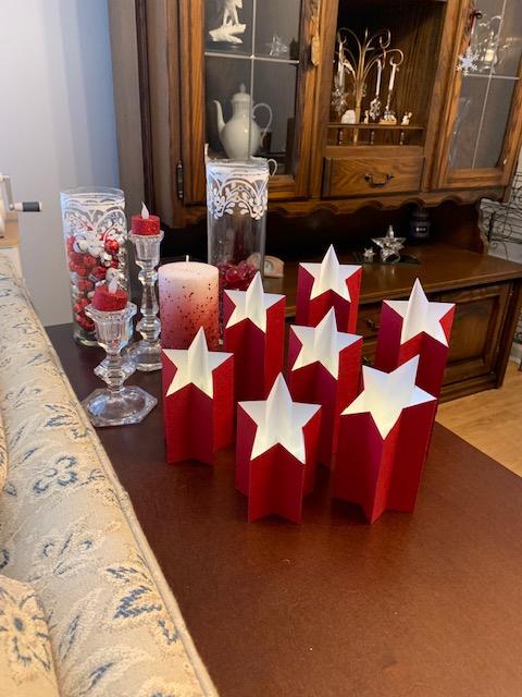 Beautiful Star Light Pillars display created by Judi Kloock Russo of Illinois - 1/2019 - Photo by Judi Kloock Russo.